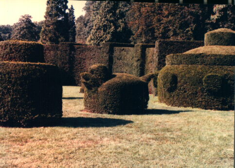 ladew topiary